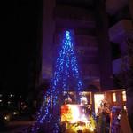 シェ・アオタニ - 大きなクリスマスツリー 綺麗‼