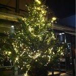 T.Y.HARBOR - 店頭に置かれたクリスマスツリー※クリスマスの時期は、店頭にクリスマスツリーが置かれていました。