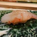 鮨西光 - 牡丹海老