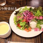 レストラン レジーナ - トレビスも使用してる彩りサラダ。860円の日替わりでも同様のサービス。