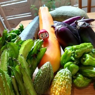 無農薬.無肥料の自然栽培のお野菜