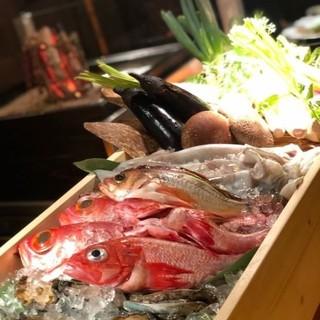 朝どれ鮮魚、旬な魚を目の前で選べる!
