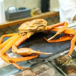 寿司栄 - 黄金蟹 本ズワイと紅ズワイの交配