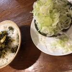 109082226 - ネギ増し(別皿) 高菜ご飯
