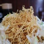 109088461 - 皿うどん 細麺