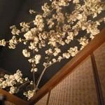 10911692 - 個室の天井にも桜