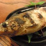 太助 - 山女か岩魚(笑