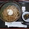 こぶし館 - 料理写真:冷し高遠どんぶりそば(並)