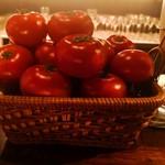109234550 - トマト