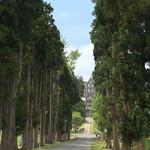 109302861 - ポプラ並木に囲まれた小道を抜けて行きます