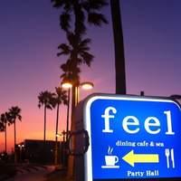 feel -