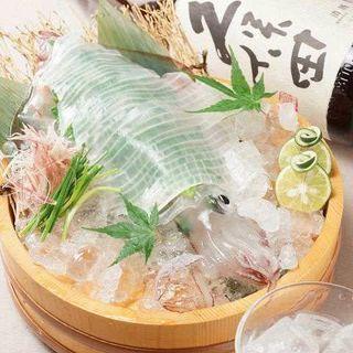 佐賀県呼子名物☆新鮮【泳ぎイカ】一度食べたら忘れられない逸品