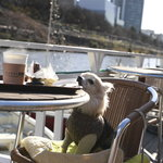 カナルカフェ - 愛犬同伴も可のデッキ席