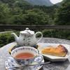 遊森歩 - 料理写真:ニルギリとオレンジタルト