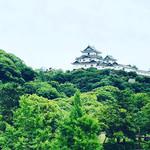 Rankouen - 目の前には和歌山城!お城好きには堪りません(^。^)