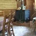 森のキッチン かわい - 店内