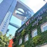 ウィラーエクスプレスカフェ - 梅田スカイビルの横にある、緑豊かなオアシスカフェです