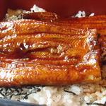 Nihonryourifuji - うなぎは割とあっさりした食感です。