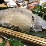 日本大漁物語 きじま - 活いかの姿造り