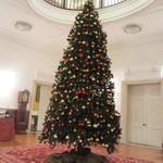 綱町三井倶楽部 - 2011クリスマスツリー