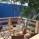 ベイベリーカフェ - 木の上の席