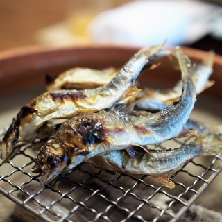 松川 - 料理写真:美山鮎塩焼き 蓼酢