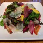 110342304 - 真鯛、ワラサ、カツオのカルパッチョサラダ仕立て