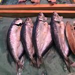 Michinoekimaidurukoutoretoresenta - イワシの干物