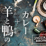 Jaguar Brown