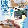 流れ鮨 三代目 おとわ - 料理写真:夏を味わう「夏鮨」