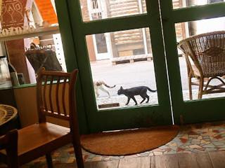 カフェ ラフカディオ - たまに外を猫が歩いている