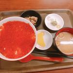 110582839 - いくらだけ丼 1980円