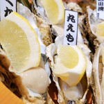 牡蠣・海鮮居酒屋 蔵よし - 生牡蠣アップ