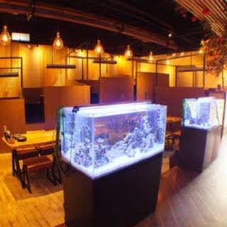 水槽でゆらゆら泳ぐ魚が癒す。和とモダンが融合した趣ある空間
