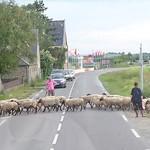 110681966 - 高速を下りると、ノルマンディーののどかな風景が
