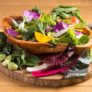 柏市・我孫子市の無農薬野菜が存分に味わえる「農民サラダ」♪