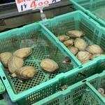 活き活き亭 - 生簀には新鮮な貝がたくさん!