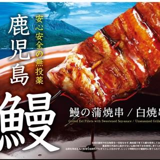 『安全・安心』鹿児島県産鰻