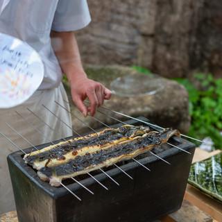 柚木元 - 料理写真:2019.7 長良川天然川鰻400g、三河湾(矢作川河口)天然海鰻400g