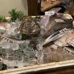 居魚屋 うおはん - お魚ワゴンサービス