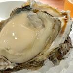 Girasole - 徳島産特大岩牡蠣