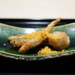 祇園 にしかわ - 稚鮎、お腹だけ衣を付けて、 唐墨、 小芋のフライ