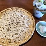 石臼挽きそば 石月 - 辛味おろしそば(834円)・・お蕎麦、辛み大根、つゆなど。