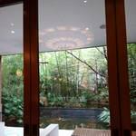 111308498 - 店内から中庭の眺め