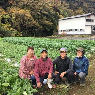 箱根山麓野菜バーニャカウダー