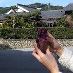 御食事処 山水 - 紫いもです。