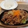 レストハウスウエノ - 料理写真:焼肉セット(肉大盛り)
