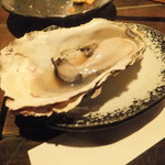 OYSTER BAR 酒肆石花 -