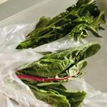 ヨーロピアンバル クル - 料理写真:お土産