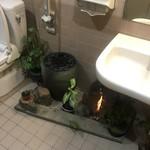 焙煎珈琲工房 梢庵 - トイレ内のインテリア